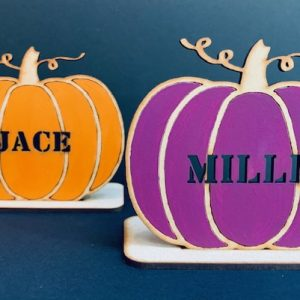Personalised Pumpkin With Stand